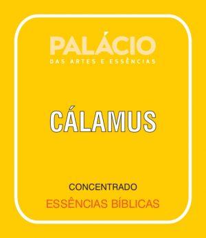 Cálamus