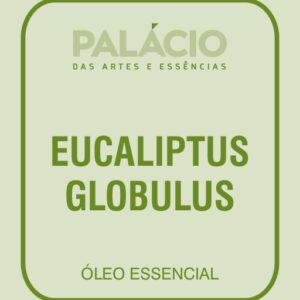 Eucalipto Globulus O.E.